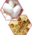 Протеины шелка Gen G + Пчелиное маточное молочко Royal Jelly